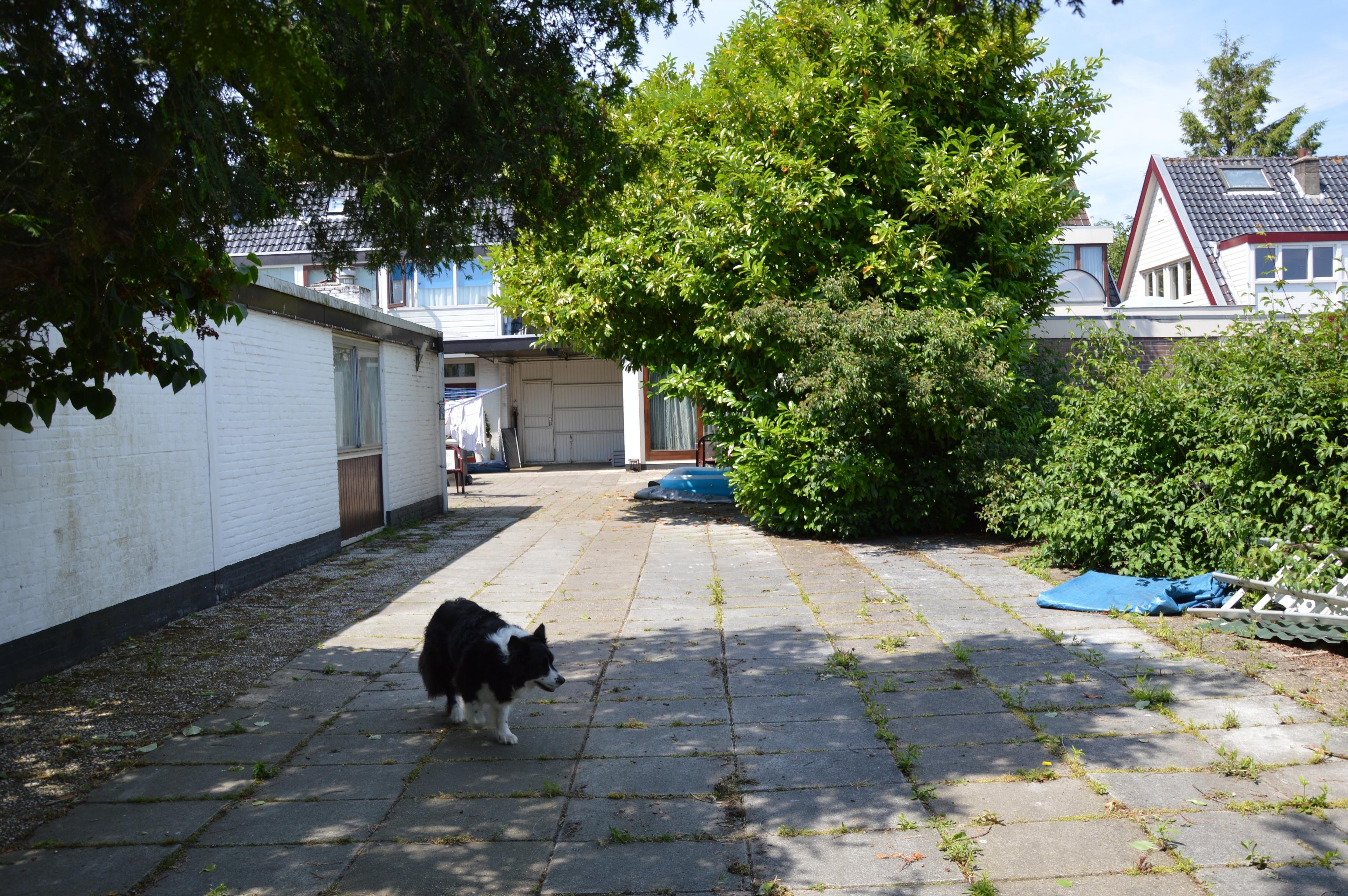 huis en tuin 002